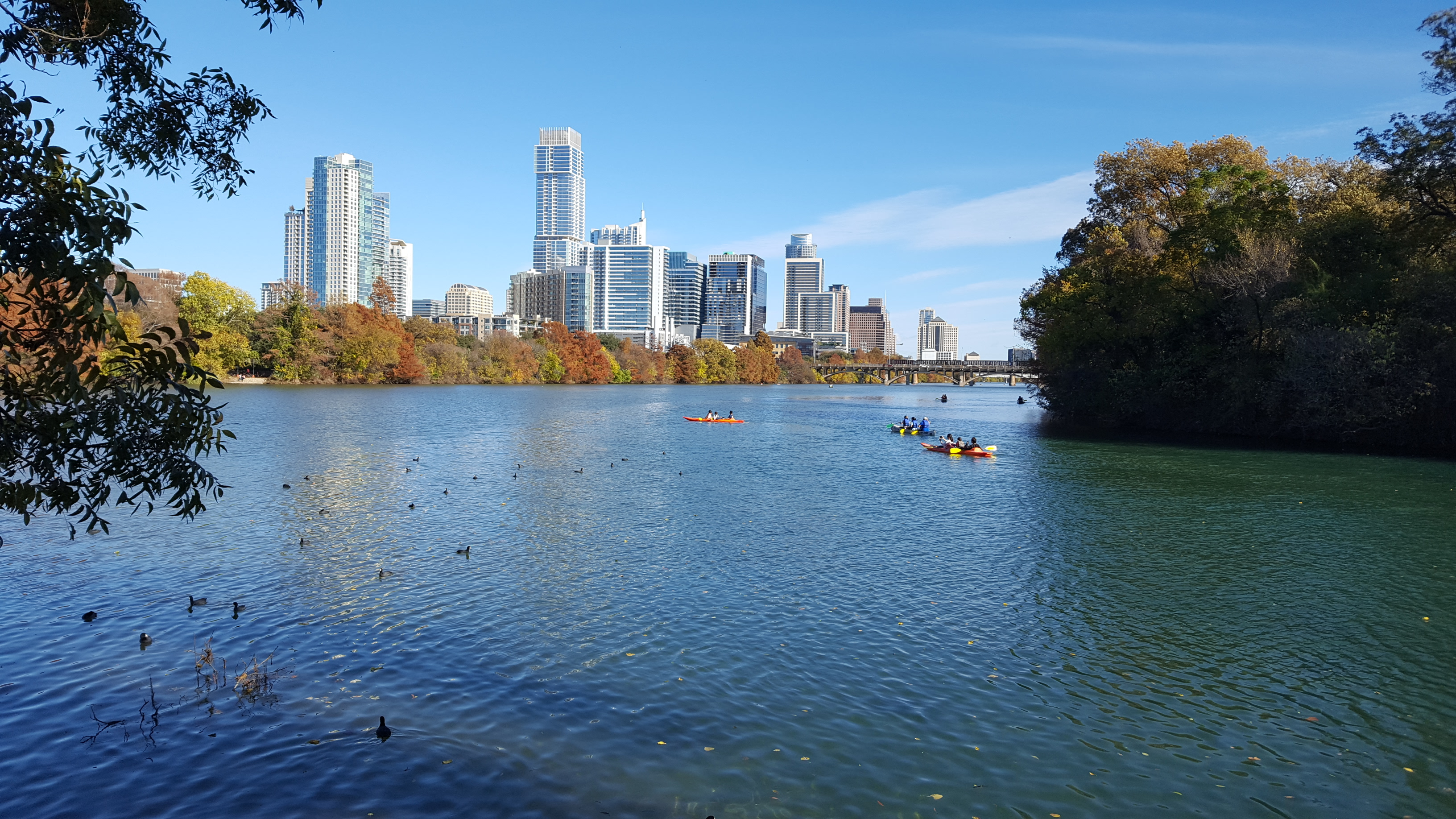 Lady Bird Lake Downtown